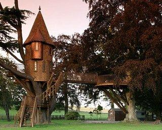 Desain Rumah Pohon Arsitektur Dunia